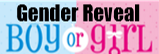 Buy Gender Reveal Fireworks On-Line