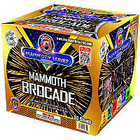 Fireworks - Maximum Load 500g Cakes - Our top selling fire works sold at our on-line store! - Mammoth Brocade